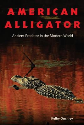 American Alligator By Ouchley, Kelby